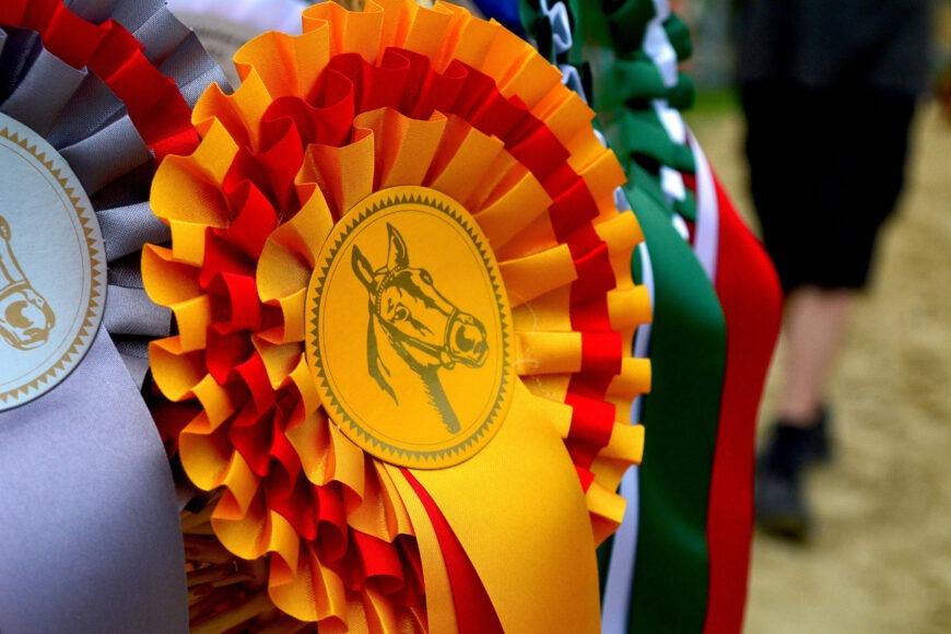 Sehr geehrte Sponsoren und Pferdefreunde…